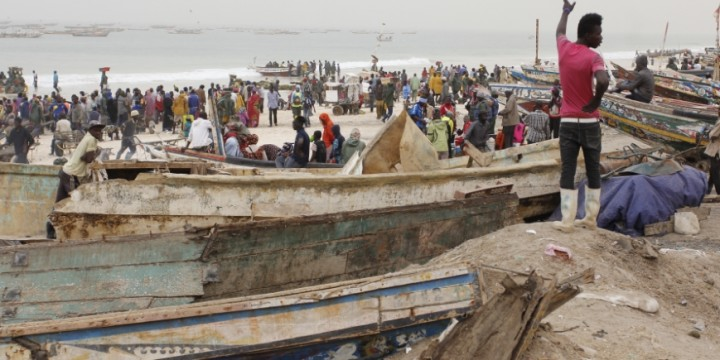 Fish market Nouakchott